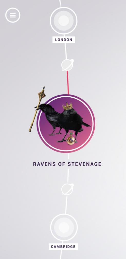 Ravens-of-Stevenage-498x1024